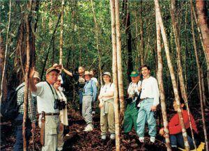 Amazon Rainforest Walk on cruise of the Motor Yacht Tucano