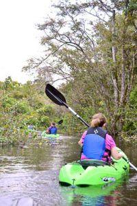 Amazon rainforest kayaking from the Motor Yacht Tucano
