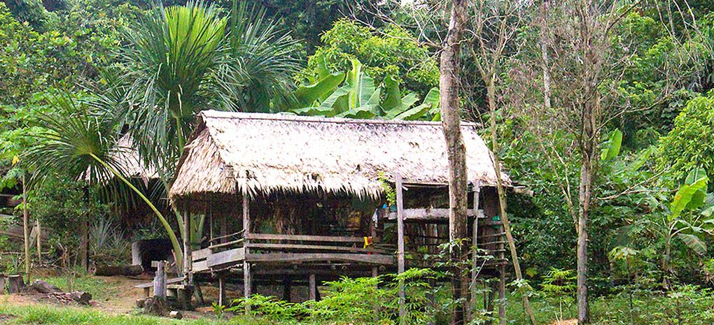 Amazon Village and Huts on MY Tucano Amazon River Cruise and Rainforest Expedition Tour